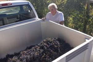 winemaking2